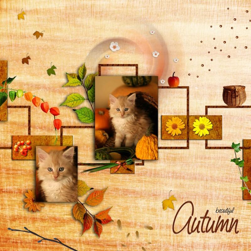 """Kit """"Couleurs d'automne"""""""