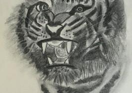 Tigre au fusain